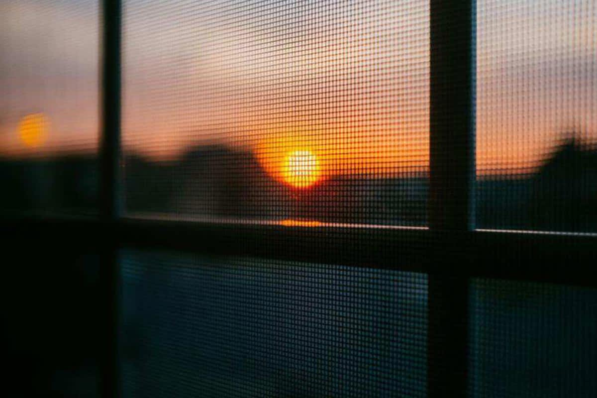 Learn how to clean window flyscreens of any type