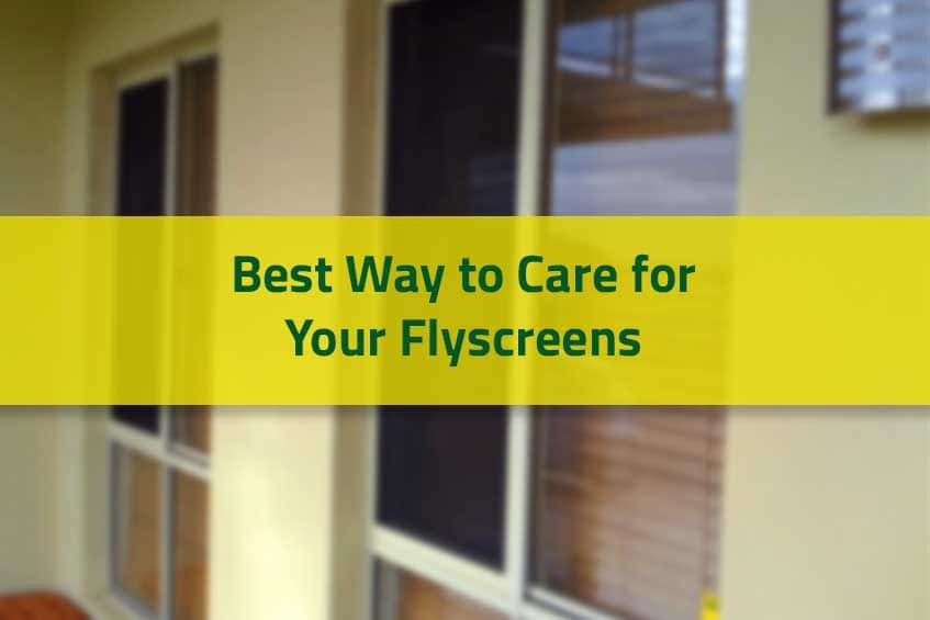 Best Way to Care for Your Flyscreens